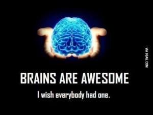 Cérebros são fantásticos.