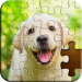 Download Jigsaw Puzzle v4.30.012 APK