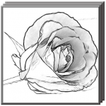 Easy Pencil Drawing Ideas v4.0 APK Download New Version