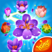 Free Download Blossom Blast Saga v100.5.1 APK