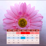Download My Menstrual Diary v3.4.3 APK For Android