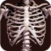 Osseous System in 3D (Anatomy) v2.0.3 APK New Version