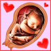 Pregnancy Week by week v8.00005 APK For Android