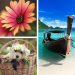 Photo Collage Editor v APK For Android