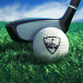 WGT Golf v APK For Android