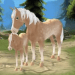 Horse Paradise – My Dream Ranch v2.02 APK For Android