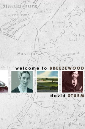 breezewood-projectspage