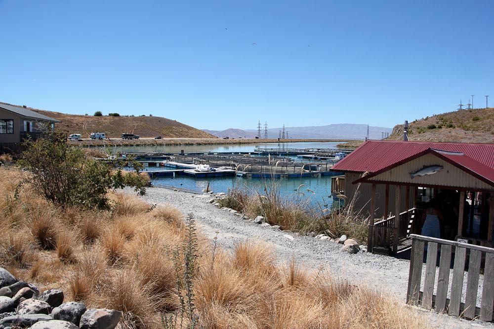 High Country Salmon Farm, New Zealand