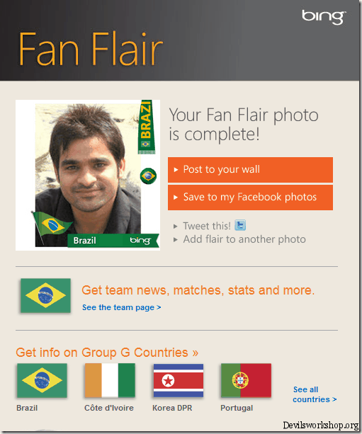 fan flair info