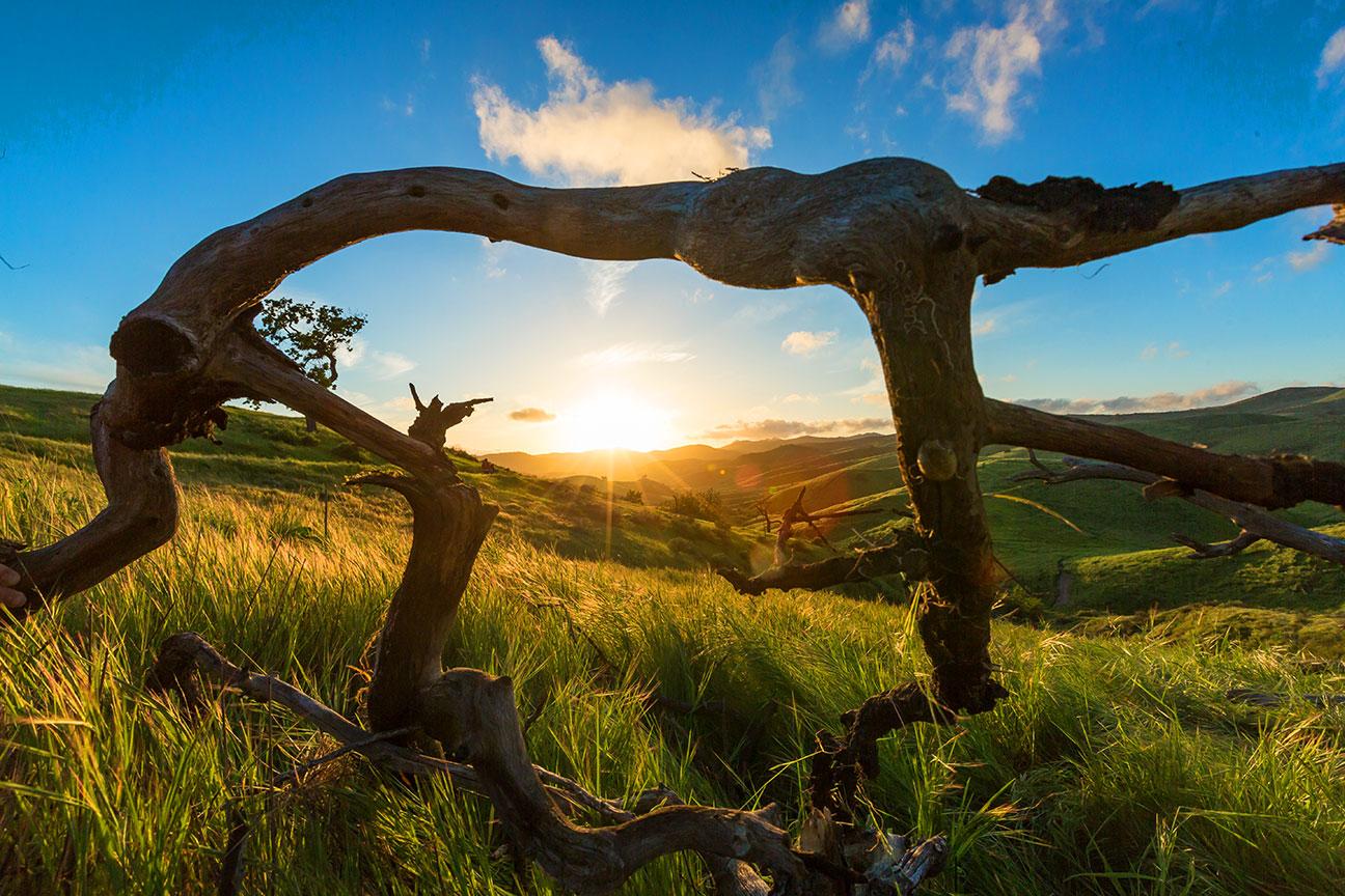 Victory-Trailhead-Sunset-2017-9