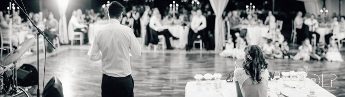 dlp-biscarini-wedding-6404-pano