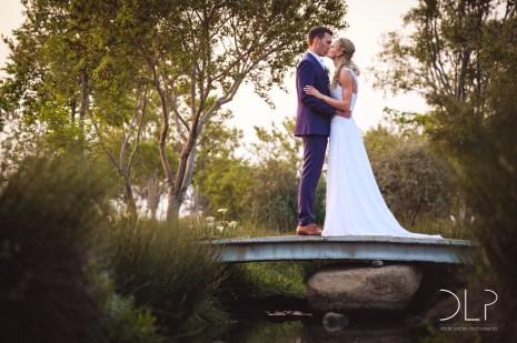 DLP-Gonelli-Wedding-0182
