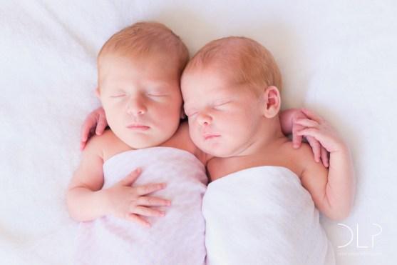 dlp-brown-twins-4949