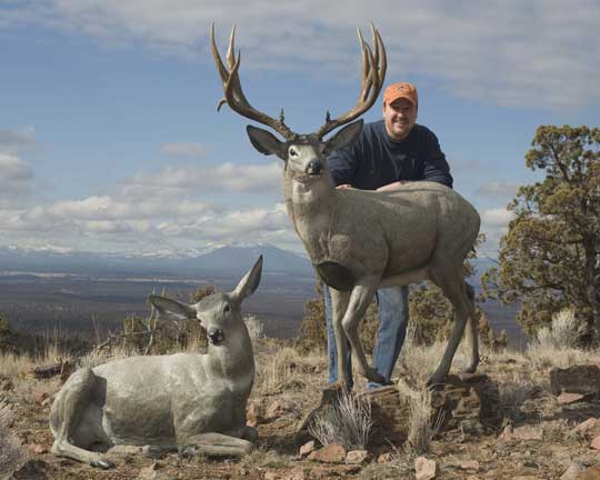 Devin Rowe, bronze sculpture artist, with his true to life mule deer bronzes. Photo by Bob Ross, near Bend, Oregon.