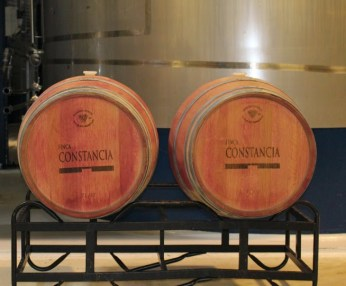 wineAgingInBarrelsConstancia