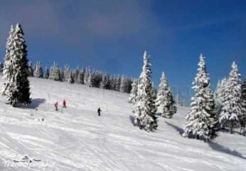 transalpina-ski-sureanu-pe-partie7