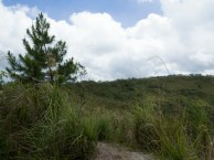 Walk around the crater rim of volcano Mahawu (Minahasa Highlands, North Sulawesi, Indonesia)
