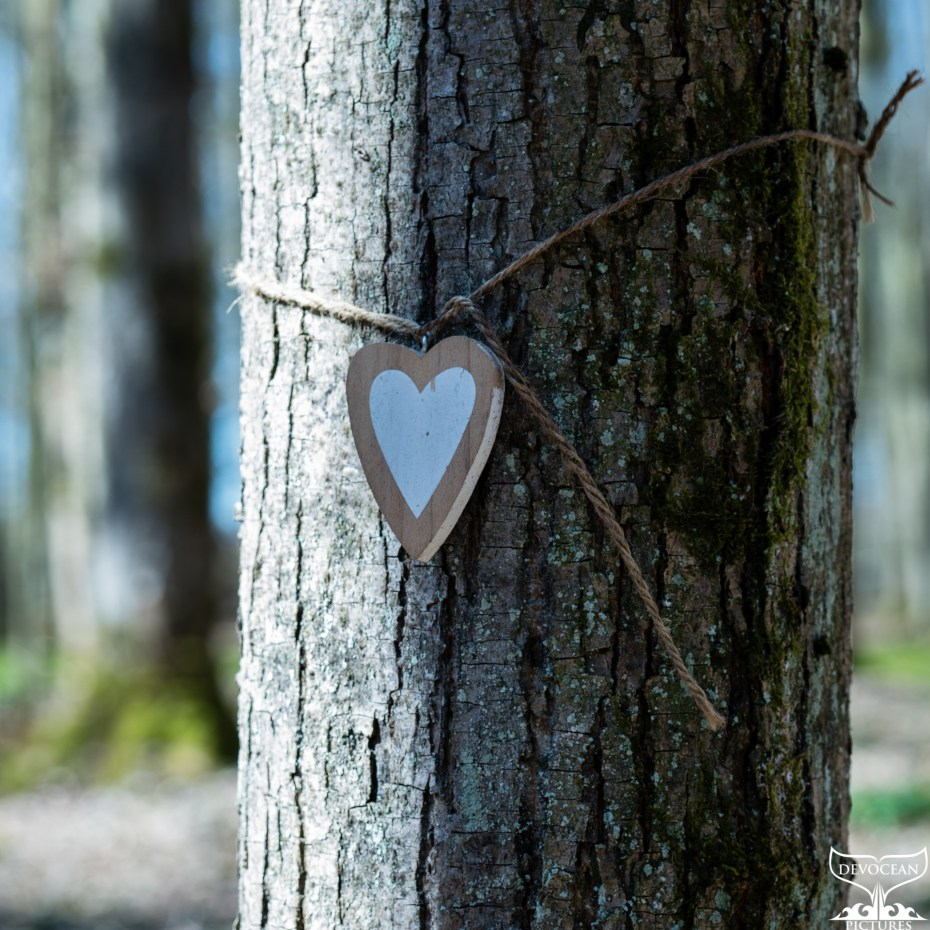 Wodden heart painted in white with light brown rim hanging on a rope around a tree in a forest.