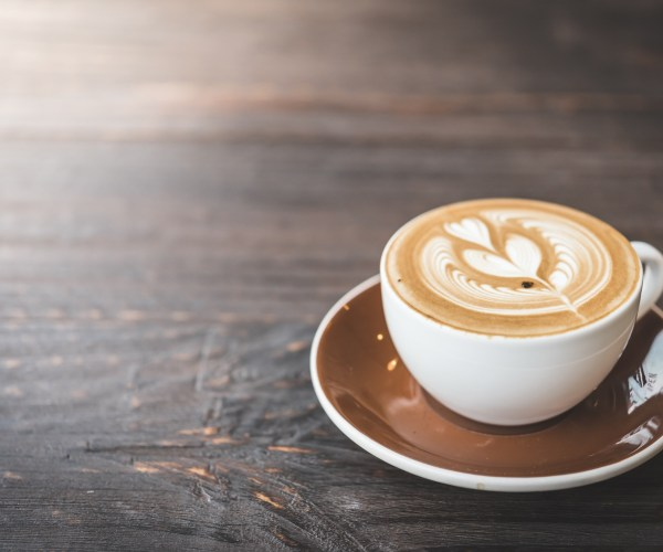 The Best Coffee & Cafes In Plymouth