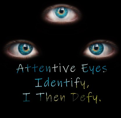 Attentive Eyes