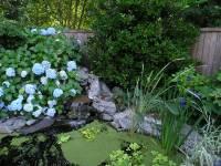 Backyard Pics  Shade Garden | devonplacehome
