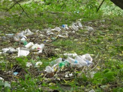 Plastic bottles, trash washed into floodplain from upstream