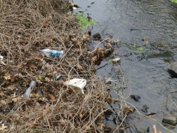 Creek trash - just below Cedarbrook Plaza