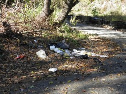 Tacony Creek Park Stream Trash
