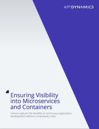 Ensuring Visibility into Microservices and Containers