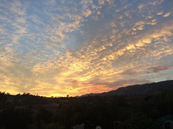 goleta sunset DBT