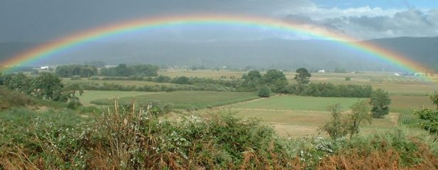 rainbow-gratitude- Linda Joy Rose