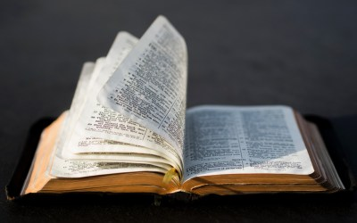 Daily Devotion – The Word And The Gospel