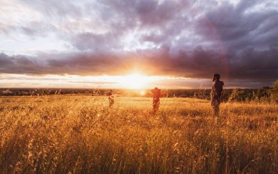 Daily Devotion – Your Harvest Fields of Ministry