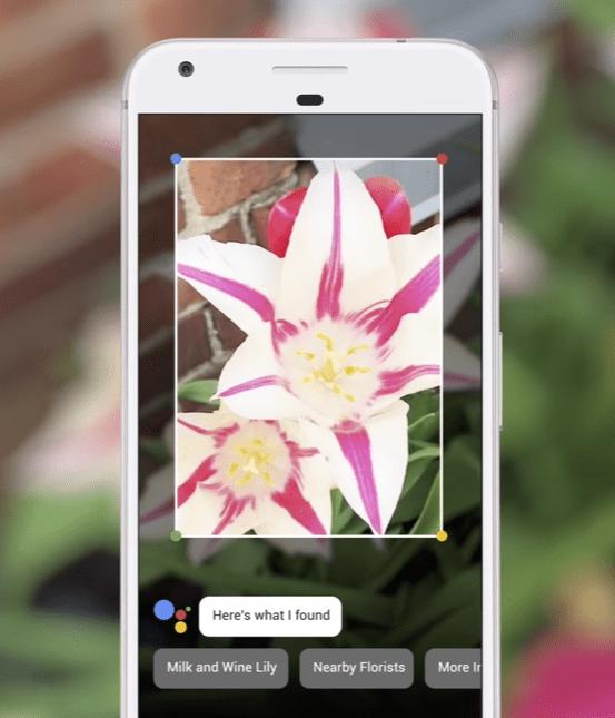 Détection d'image par Google Lens