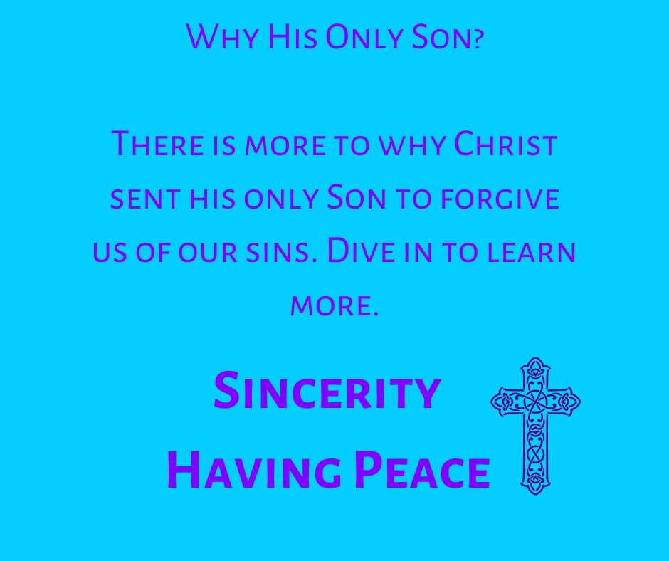 His Only Son