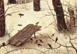 https://en.wikipedia.org/wiki/Bird_trapping