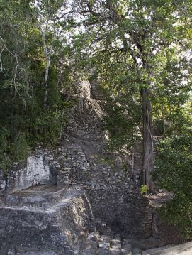 http://commons.wikimedia.org/wiki/File:Jungle_covered_ruin_Coba_2_(4374410534).jpg