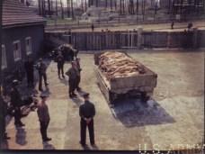 http://commons.wikimedia.org/wiki/File:Corpses_Wagon_Buchenwald_18th.jpg