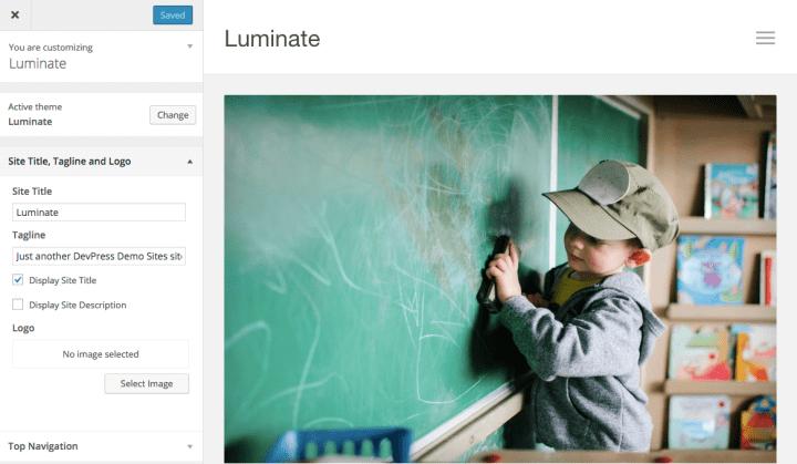 luminate-customizer