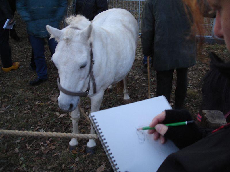 zuidlaardermarkt Horse fair art 15