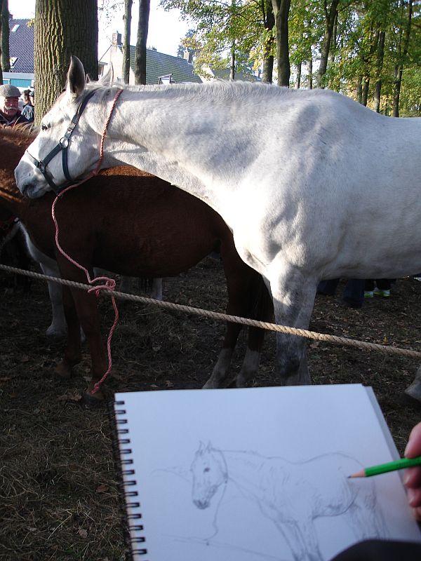 zuidlaardermarkt Horse fair art 35