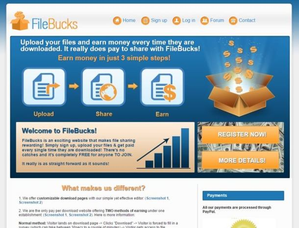 Earn Online by Sharing files -Filebucks