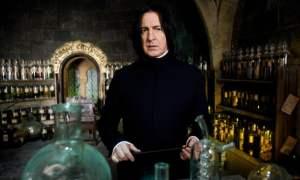 Severus Snape Quiz