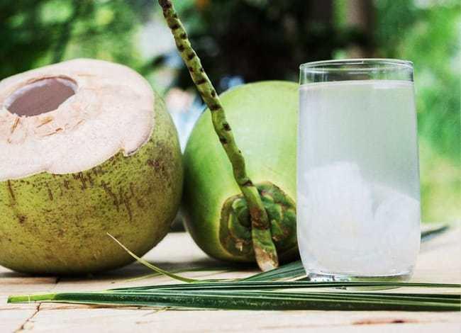 Kenapa Air Kelapa Menjadi Minuman Yang Wajib Diminum Oleh Atlet