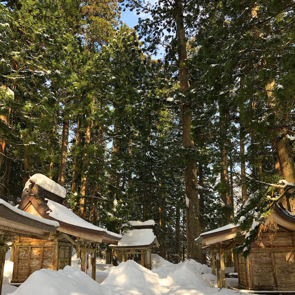 The path to the Mt. Haguro Five Story Pagoda inundated with snow in winter