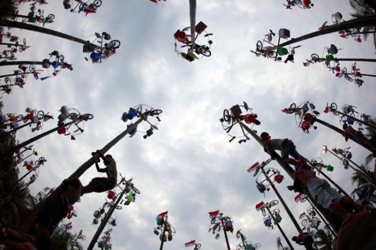 750xauto-ini-sejarah-tradisi-panjat-pinang-di-indonesia-150805m.jpg