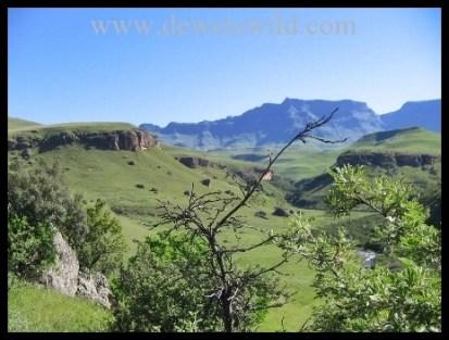 The rolling hills of Giants Castle Game Reserve in the uKhahlamba Drakensberg Park
