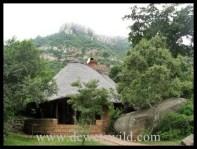 Ntshondwe, Ithala, December 2012