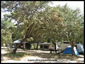 Camping at Maroela