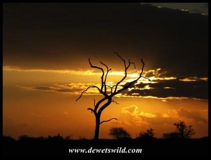 Sunset on the Nwanetsi River Road (S100)